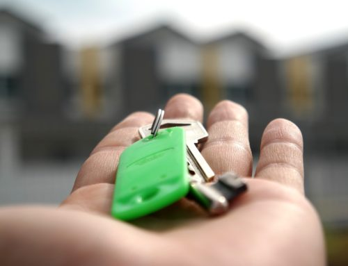 Growth in The New Build Property Market